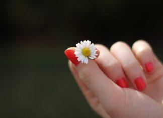Zadbane dłonie i paznokcie to nasza wizytówka